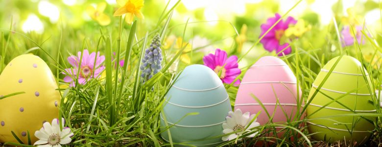 colorful-easter-eggs-in-grass-HD-Wallpaper-1-780x300